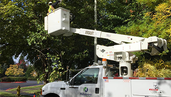 Look Up! LED Street Light Conversion Underway