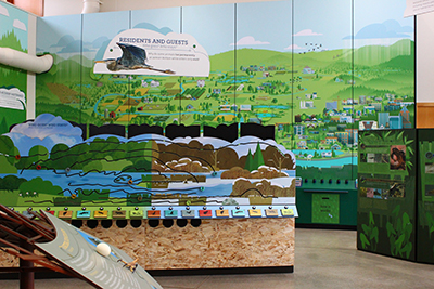 Photo of the Exhibit Hall in the Jackson Bottom Wetlands Education Center.