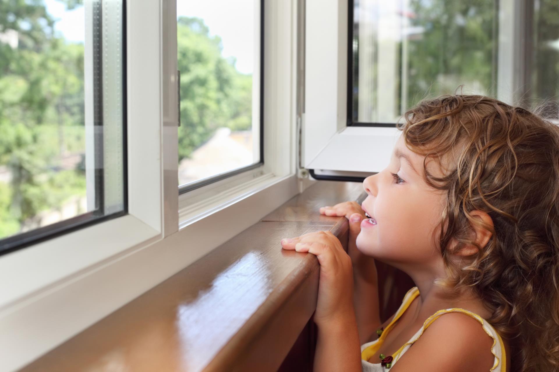 Window Safety