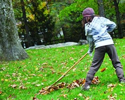 A young girl raking leaves in the fall