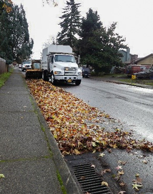 City crews collecting leaves from the street