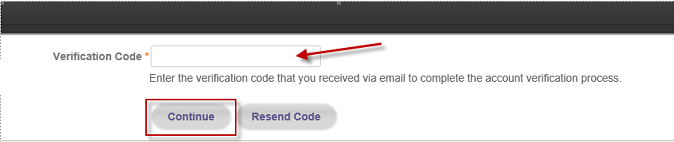 Verification Code Form Example