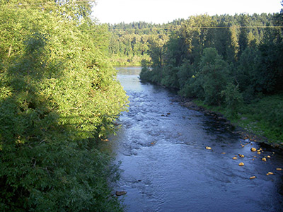 Willamette River at Wilsonville