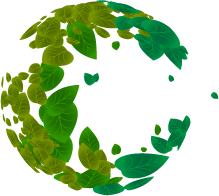 Earth_Leaves Only