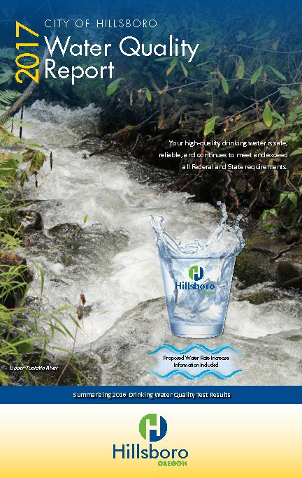 2017 CCR Water Quality Report Cover