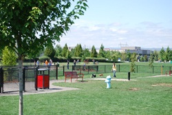 Image of the Hondo Dog Park #2