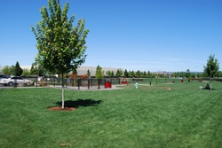 Image of the Hondo Dog Park
