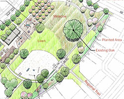 A sketched map of one of South Hillsboro's proposed parks depicts a meadow, lawn, sports field, trail, play areas, and the preservation of existing trees.