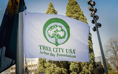 Tree City USA Flag Photo 400x251
