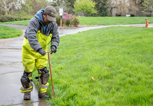 Joel Camacho working on a sprinkler in Evergreen Park