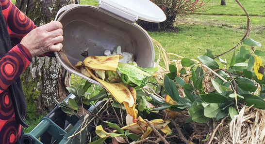 Food scraps being thrown into a composting bin