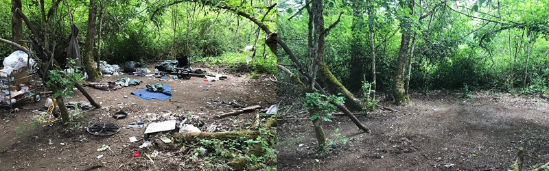 Homeless encampment cleanup before and after