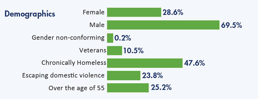 Demographics bar graph and percentages.