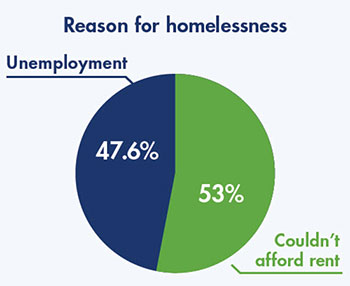 Reason for homelessness pie chart.