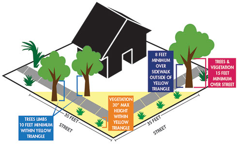 A diagram of intersection clear zones, including a 25 foot triangular clear zone for residential intersections, where objects may be no more than 30 inches high. Trees must be trimmed to 8 feet above sidewalks and 15 feet above roadways as of January 1, 2020.