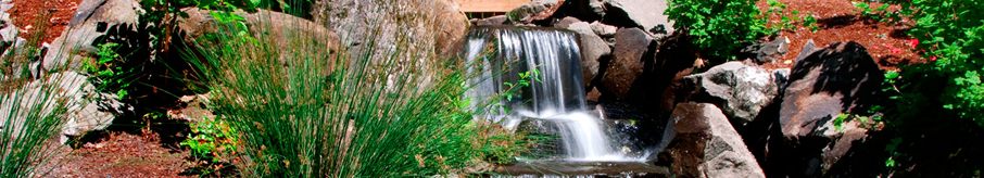 Header Waterfall