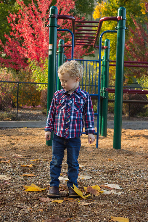 Picture of little boy standing in fenced playground