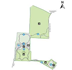 Evergreen Map Thumbnail