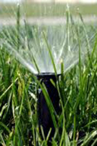 An in ground sprinkler watering grass