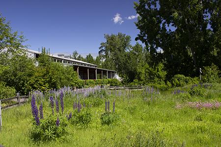 Jackson Bottom Wetlands Preserve Nature Center and Pollinator Garden