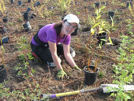 Photo of woman planting tree.