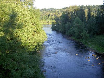 Willamette River at Wilsonville